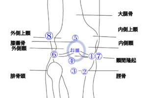 膝の症状部位別