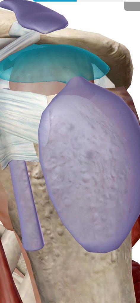 肩峰下滑液包炎